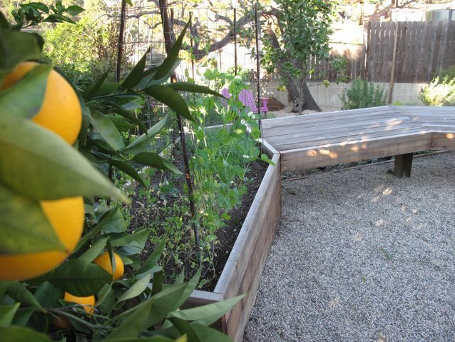 Love The Bench Attached To The Raised Bed Garden