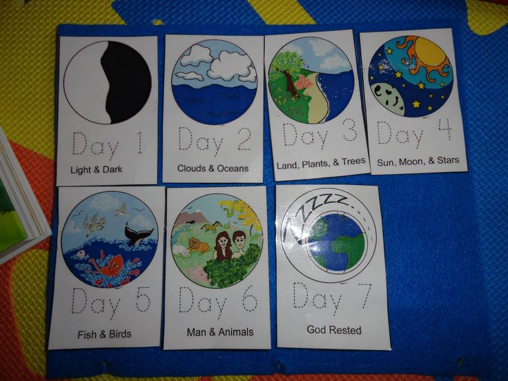 Best 25 days of creation ideas on pinterest creation bible days of creation book next weeks chapel day to reviewhammer in the concept sciox Image collections