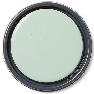 """""""This gorgeous watery green complements just about any shade of blue. I used it for my son's room."""" PAIGE REIN, HGTV's Hidden Potential  Benjamin Moore, Appalachian Green (852)"""