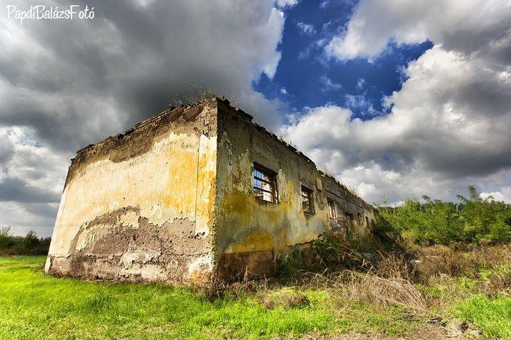 Elhagyott lovardaépület Mezőhegyes közelében. (Fotó: Papdi Balázs)