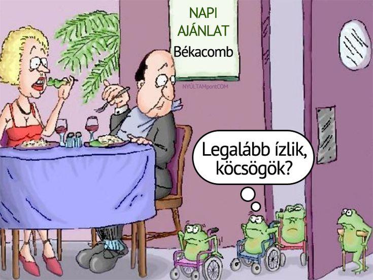 Napi ajánlat: békacomb | NYÚLTAMpontCOM