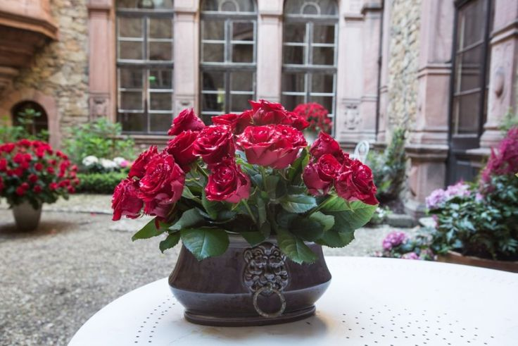 Festiwal kwiatów - Zamek Książ