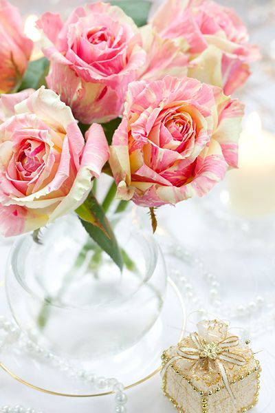 Strikingly beautiful pink and cream striped roses: Brindabella Swirls, Pink Flowers, Easter Wedding, Pink Yellow, Yellow Rose, Colors Rose, Beautiful Flowers, Pink Rose, Beautiful Rose