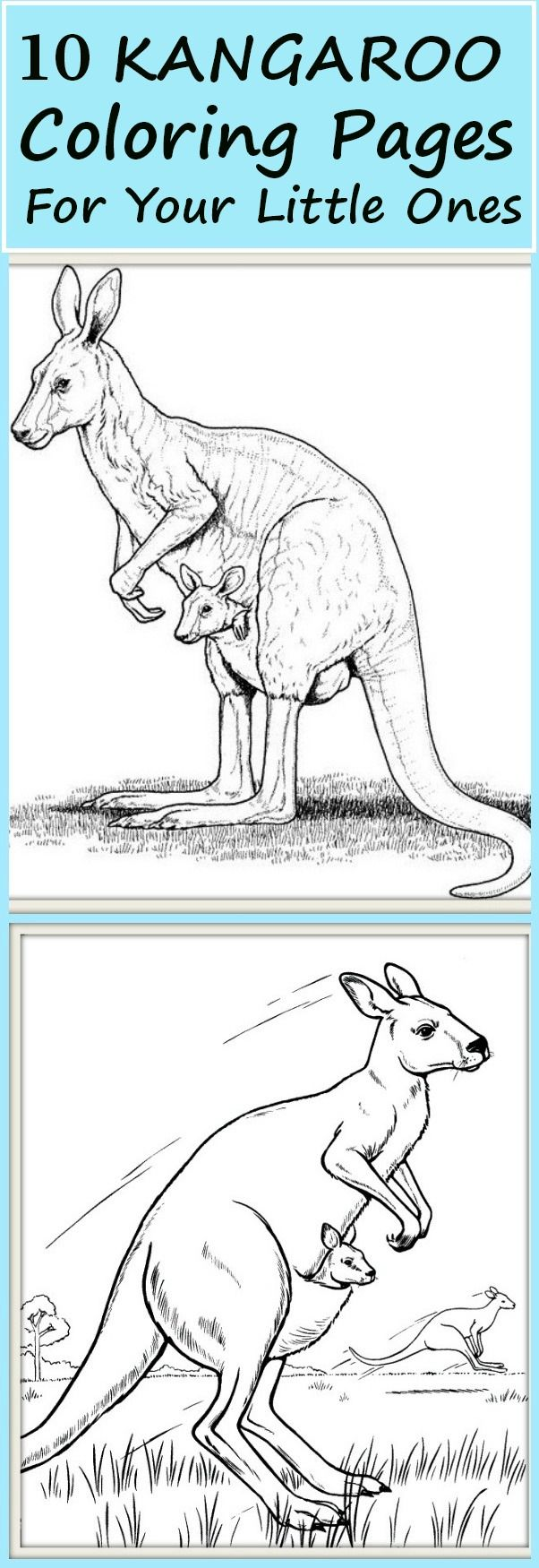 Kangaroo colouring page 2 - 10 Cute Kangaroo Coloring Pages For Your Little Ones These Kangaroo Coloring Pages Are Fun