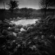 Lowlands « Martin Bogren