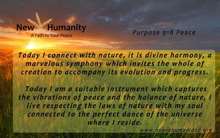 Purpose 918 Peace