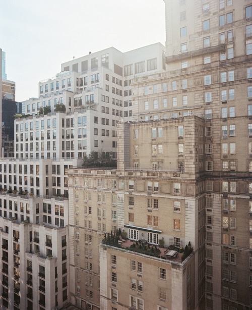 NY roof garden: Rooftops Gardens, Lonni Magazines, Color Palettes, New York Cities, Terraces Gardens, New Yorker, Outdoor Patio, Roof Gardens, Cities View