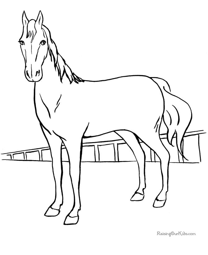 75 Horse Coloring Book Game