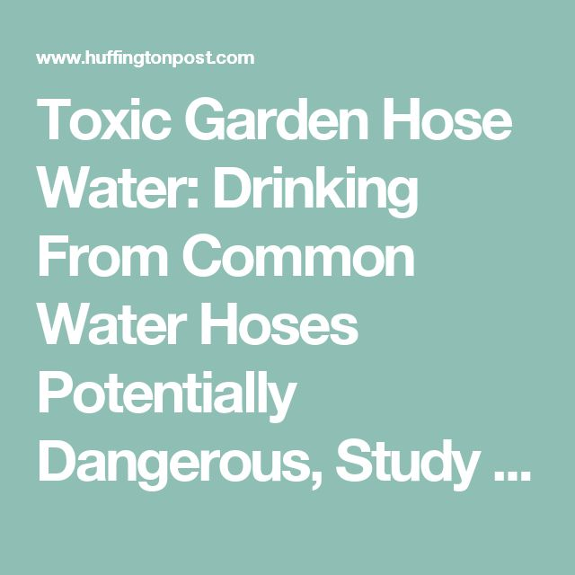 Common Garden Hose Water Could Be Dangerous To Your Health, Study Says