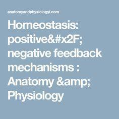 Homeostasis: positive/ negative feedback mechanisms : Anatomy & Physiology