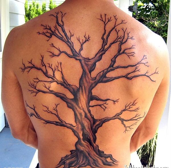 25 Cool Tree Tattoos on Back