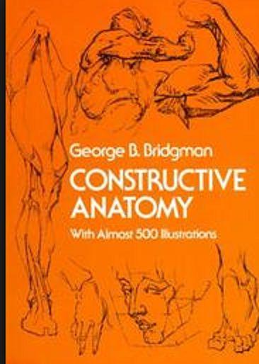 Download Constructive Anatomy Pdf Latest Ed Free ...