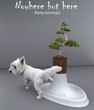 Zen doggy potty.  My doggies would never.