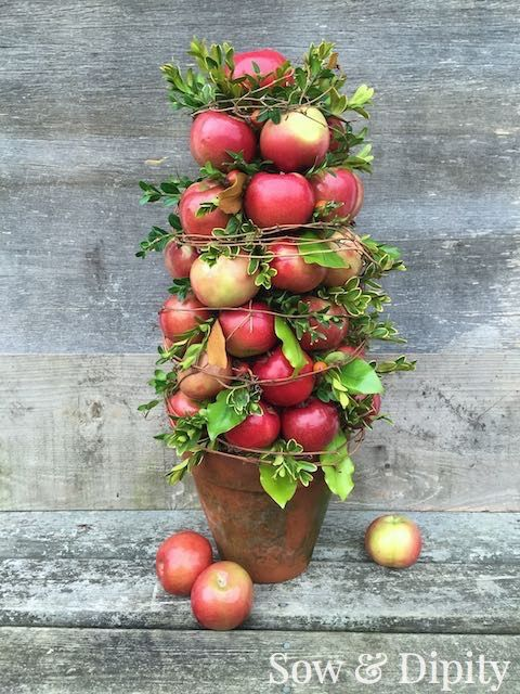 Colonial Williamsburg Apple topiary is gorgeous and easy to make for Christmas decor.
