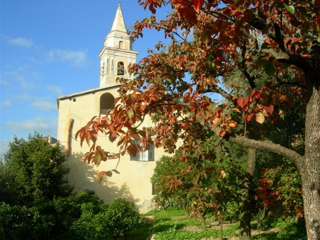 View of Saint Luca church from the grove