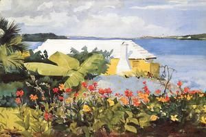 Flower Garden and Bungalow, Bermuda  Winslow Homer