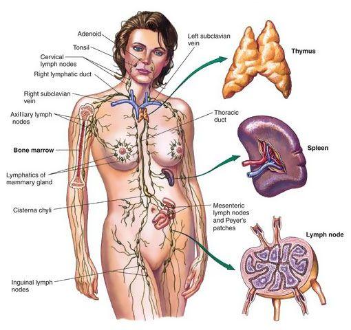 September Lymphoma Awareness Month.
