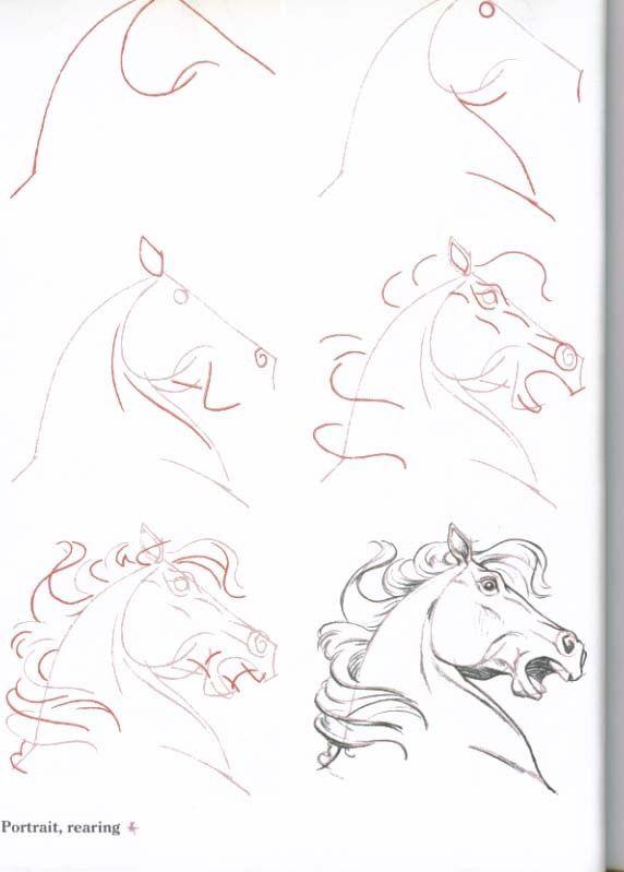 Paardenhoofd tekenen | Paardentekening - Horseart ...