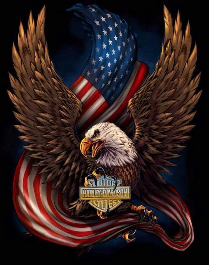 Eagle And American Flag Vinyl Sticker Decal Inches Height TODAY ONLY!Buy 2  Get 2 Free!Buy 5 Get 5 Free!Buy 10 Get 10 Free! ~ Sticker Is High Quality U003d  ...