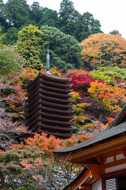 Nara (奈良市), Japan (日本)