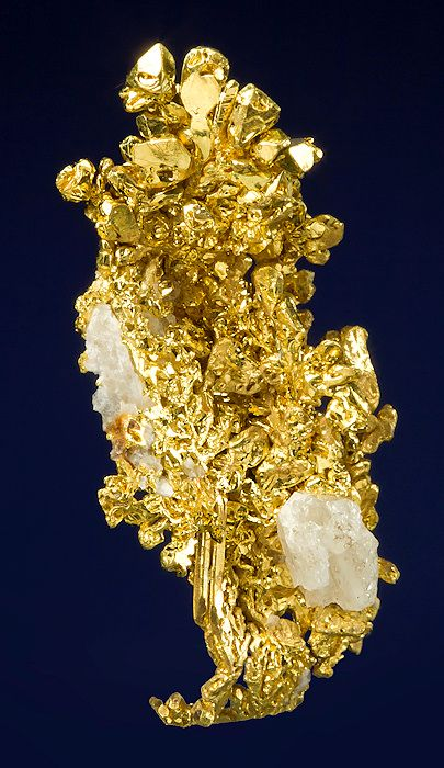 Brilliant and incredibly crystalline specimen of Native Gold with a bit of Quartz matrix!