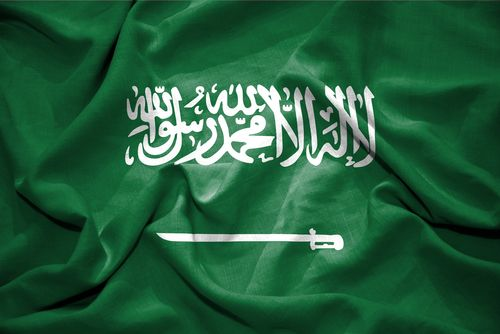 The Choice for the House of Saud: Reform or Resistance?