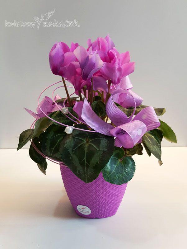 Kwiaty W Doniczce To Dobry Pomysl Na Sympatyczny Prezent Plants Home Decor Decor