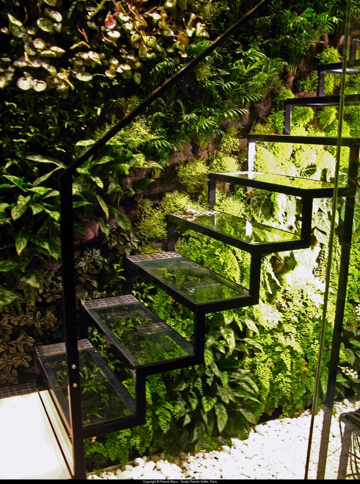 Vertical garden? Yes.