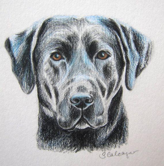Black Lab Dog Drawing Lab Lover Gift Labrador By