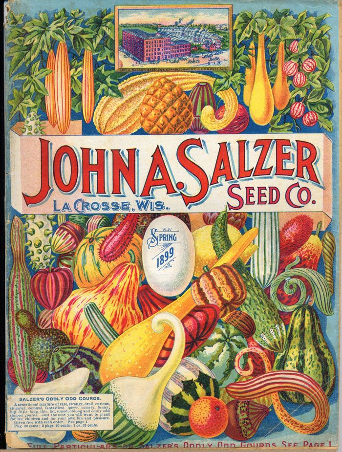 Flower Seed Packets from the1800s.  I love this seed packet.