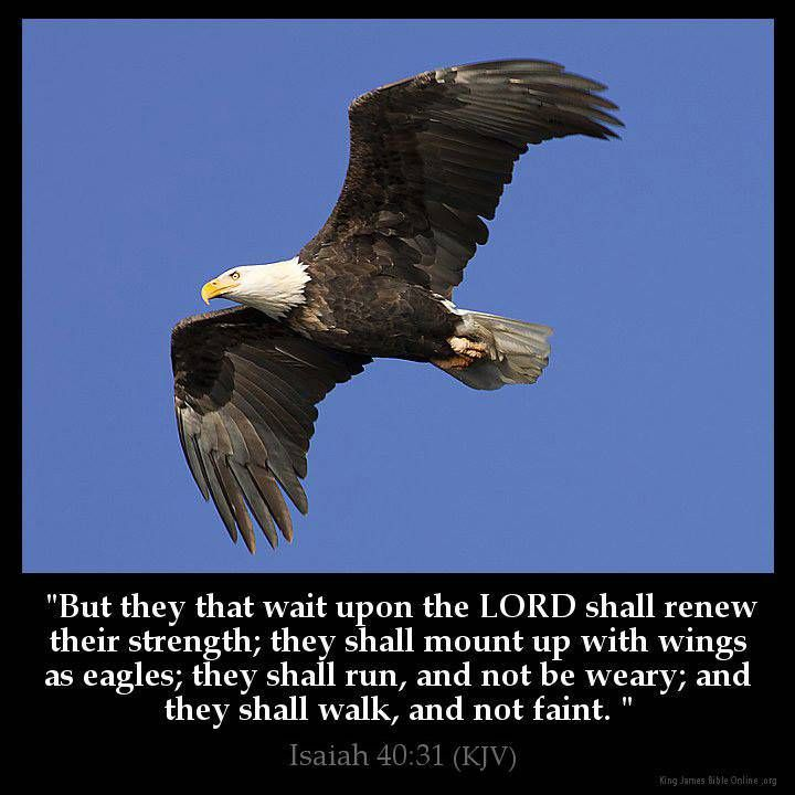 "Isaiah 40:31 KJV!! ( http://kristiann1.com/2015/02/25/is4031/ ) ""But they that wait upon the LORD ( ADONAI ) shall renew their strength; they shall mount up with Wings as Eagles; they shall run, and not be weary; and they shall walk, and not faint."" ✝✡Hallelujah & Shalom!! Kristi Ann✡✝"