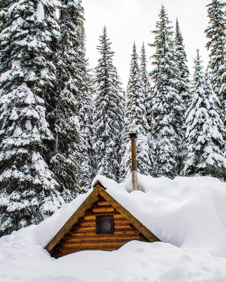 As you can see Red Mountain in B.C.'s Kootenay-Rockies gets a lot of snow. But there are many more reasons this resort is special... find out in the latest issue of Explore Magazine out now. : @margopfeiff . . . #explorecanada #explorebc #ilovebc #ski #skicanada #outdoors #winter #powder #exploremag