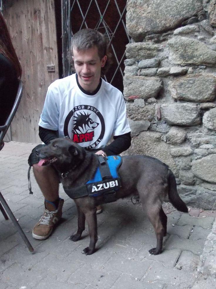 Azor Punk Rock Festiwal 2014 - podsumowanie niebawem, ale prawie 200 kg karmy wylądowało w uciechowskich brzuszkach :) #psy #pomoc #schronisko #dogs #shelter #help