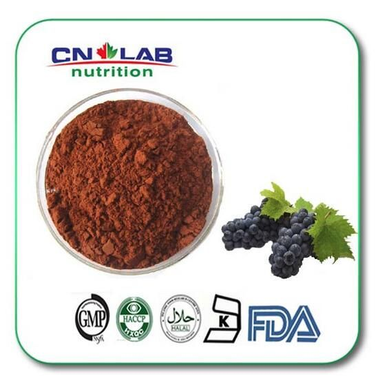 100g/lot top quality Kosher/Halal/ISO antioxidant grape seed,grape seed extract powder 95%