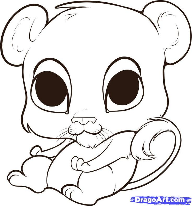 12++ Cartoon cute animals to draw images