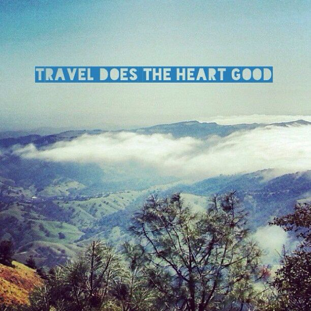 Specialty Travel: 53 Best Images About Tour Operators In India On Pinterest
