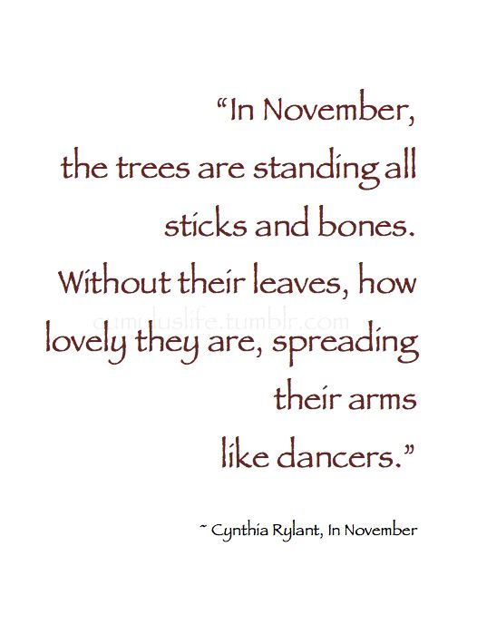 "~ Autumn ~ ""In November, the trees are standing all sticks and bones. Without their leaves, how lovely they are, spreading their arms like dancers."" ~ Cynthia Rylant, In November  #Quote"