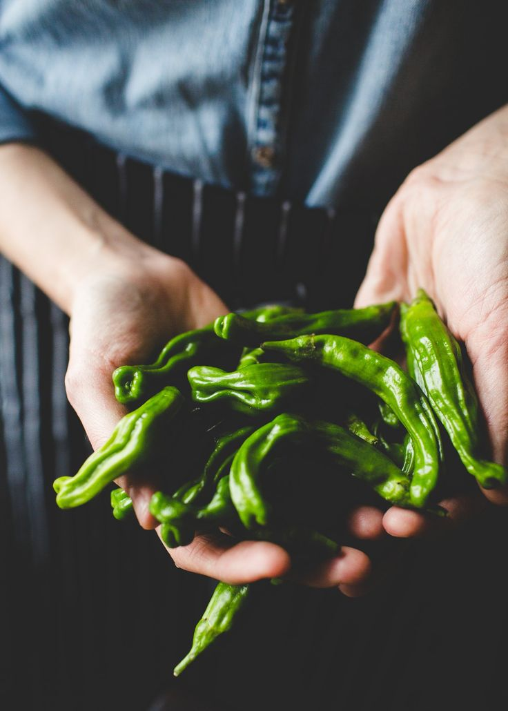 Your Cast Iron Pan Is Begging for Shishito Peppers — The Vegetable Butcher