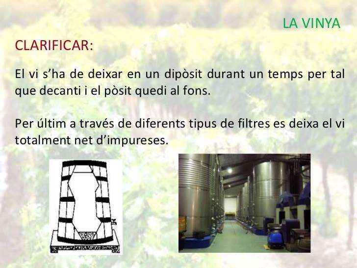 Proceso elaboración del vino