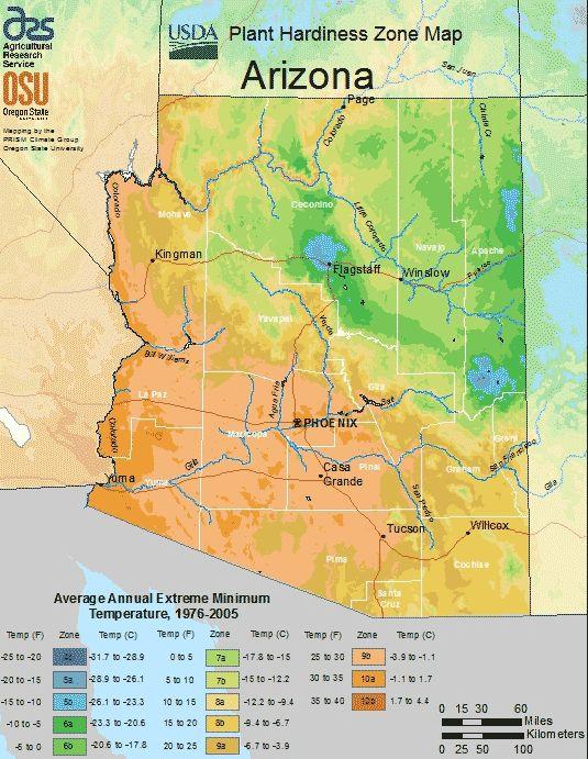 Arizona Planting Zone Map Small