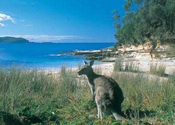 South Durras Beach NSW