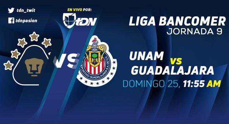 El equipo de U.N.A.M. recibe en la cancha del Estadio Olímpico de Universitario (Ciudad de México (D.F.)) a Guadalajara en partido de <a href='https://tv.futboladiccion.com/liga-mx/'>Liga MX</a>. Debido al juego que corresponde a la jornada 9, la transmisión de Pumas vs Chivas en Vivo será por medio de Univision Deportes USA. En unos instantes descubre a que hora juega U.N.A.M. y otros detalles.
