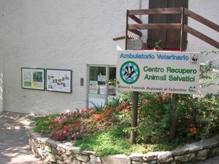 """Stefani: """"La struttura del """"tiro al piattello"""" di Grottaglie potrà diventare un Centro Recupero Animali Selvatici"""" - http://www.grottaglieinrete.it/it/stefani-la-struttura-del-tiro-al-piattello-di-grottaglie-potra-diventare-un-centro-recupero-animali-selvatici/ -   recupero animali selvatici, tiro al piattello, wwf - #RecuperoAnimaliSelvatici, #TiroAlPiattello, #Wwf"""