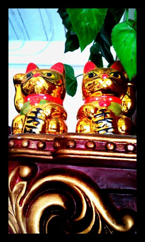 #moneycat #manekineko #goodfortune
