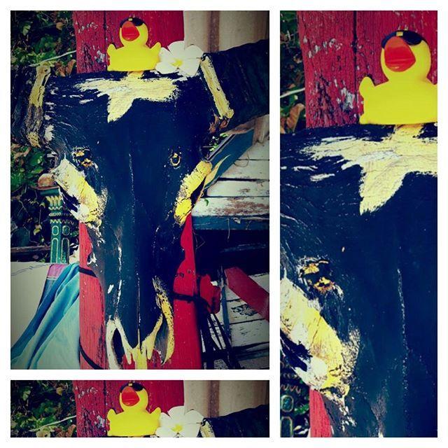 #badeendwinkel# just a great decoration at a beach bar at koh chang#rubberduck#ducky#badeend#