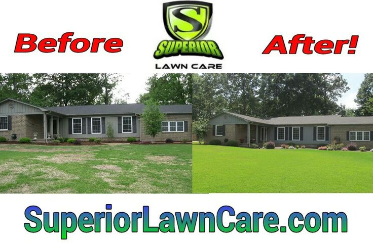 Thicker, greener lawns with less weeds... Guaranteed! North Alabama's #1 Weed Control / Fertilizer Program with Soil Boosters included! Madison Turf Care, Harvest Turf Care, Athens Alabama Turf Care Program, Decatur Turf Care, Hartselle Alabama Turf Care. Superior Weed control and Fertilizer Services!
