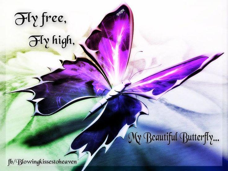 butterfly heaven wallpaper - photo #4