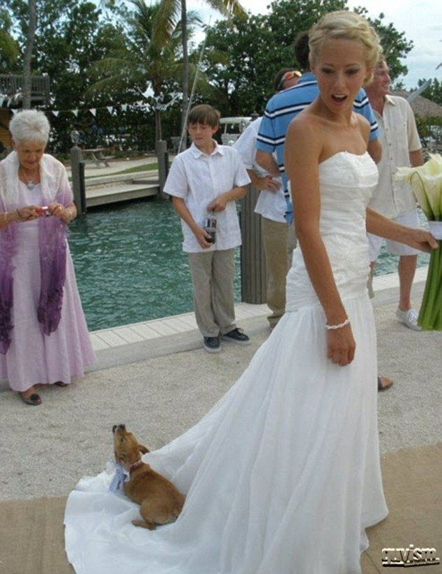worst wedding dress pictures - 634×822