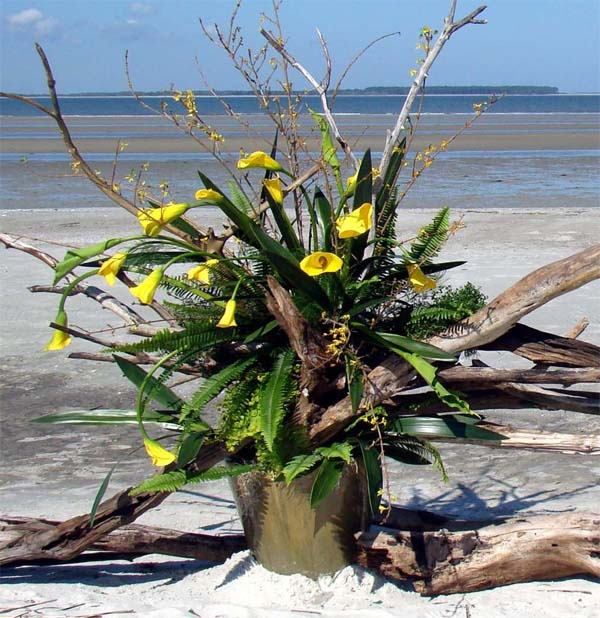 Flower Arrangement Using Driftwood: 17 Best Images About Driftwood Arrangements On Pinterest