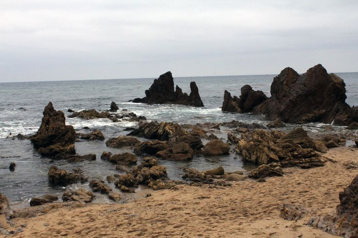 tide pools in little corona del mar beach